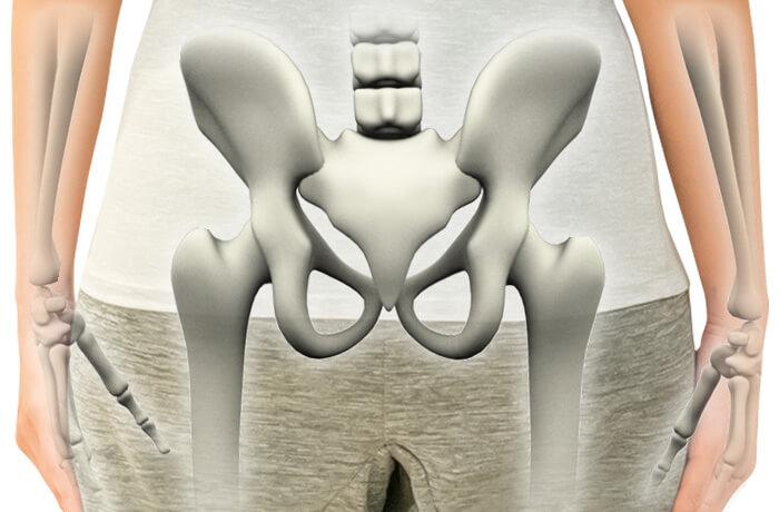 骨盤の5つの重要な役割